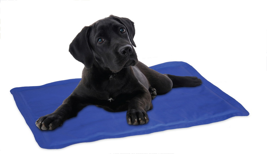GEL Pet Cooling Mat
