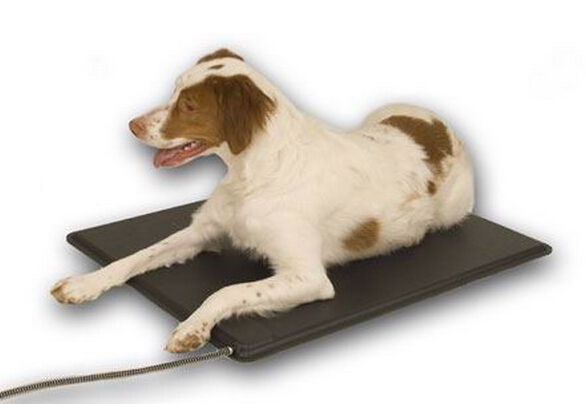 Plastic Heated Pet Mat